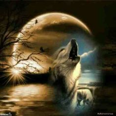 Beautiful howling wolf n moon pic :-) Are you calling my name? Wolf Images, Wolf Pictures, Wolf Spirit, My Spirit Animal, Beautiful Wolves, Animals Beautiful, Tier Wolf, Wolf Artwork, Howl At The Moon