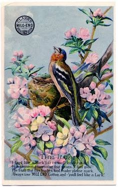 Vintage Graphic - Pretty Lark with Nest and Flowers - The Graphics Fairy