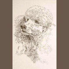 Standard Poodle - Artist Kline draws his dog art using only words. Signed 11x17 Lithograph 83/500 - Artist Adds Your Dogs Name Into Art Free. $59.95, via Etsy.