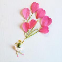 Flora Forager - Bridget Beth Collins - floraforager.com