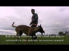 Competitive Heeling - Reward Placement