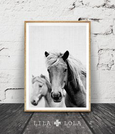 Horse Photo, Horse Print, Black and White Photography, Wall Art, Icelandic Horse, Equestrian Art, Modern Minimal Photo, Printable Art