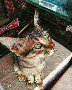 Throwback to trippyneilers :') #trippy #psychedelic #cats #ilovecats #throwback #meow #deepdream by neilers