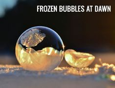 Angela-Kelly-Frozen-Bubbles-macro-nikon-1