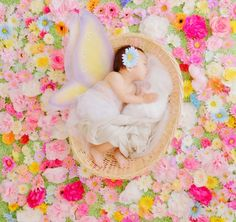 001main Newborn Picture Outfits, Newborn Photos, Beautiful Baby Pictures, Japanese Babies, 6 Month Baby Picture Ideas, Baby Poses, Baby Portraits, Newborn Baby Photography, Baby Art