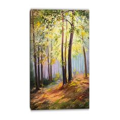 Designart Canada PT6110 Spring Forest with Sunlight Canvas Art