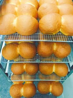 Traditional Guyanese Tennis Rolls at Alima's Roti and Pastry 13 Kenview Blvd Brampton ONT Canada 905 791 7684 Bread And Pastries, Sweet Bread, Tennis, Bakery, Rolls, Coconut, Canada, Traditional, Breakfast