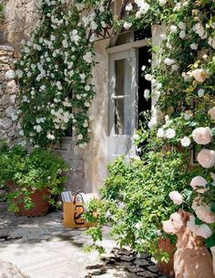 Antico Mas nel Luberon Shabby Chic Mania by Grazia Maiolino Small Cottage Garden Ideas, Garden Cottage, Home And Garden, French Garden Ideas, Backyard Cottage, Garden Bed, Garden Gates, Climbing Roses, French Farmhouse