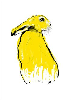 Yellow Hare by Tiff Howick. 2 colour screenprint made with water based inks and sustainably sourced, thick, bright-white paper.  Open edition signed by the artist  Paper size: 300mm x 420mm OR 500mm x 700mm