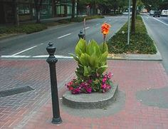 The world's smallest park - Mills Ends Park in Portland, OR.