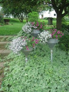 these are funnels, stuck on wood handles to plug the hole  provide a stake for putting in the ground.  Love the height the give the flower bed.