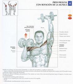 ejercicio hombros frontal, rotacion muñeca