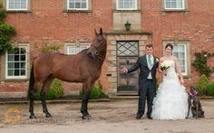 The Bride and Groom wanted the animals to feature in the wedding photos...