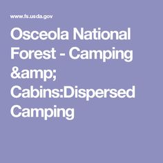 Osceola National Forest - Camping & Cabins:Dispersed Camping