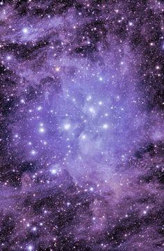 #Purple Sky Stars