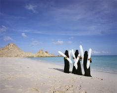 'Amongst Treasures' at De Nederlandsche Bank - Scarlett Hooft Graafland