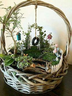 37 beautiful gnome garden and fairy garden design ideas 15 Indoor Fairy Gardens, Mini Fairy Garden, Fairy Garden Houses, Miniature Fairy Gardens, Fairy Gardening, Fairy Gardens For Kids, Miniature Fairies, Fairies Garden, Gardening Quotes