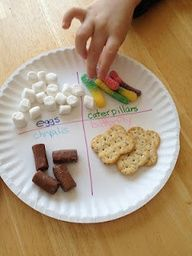 Edible butterfly life cycle - FUN AND EASY way to teach little ones :) I cant wait to do this with Kason in a few months!