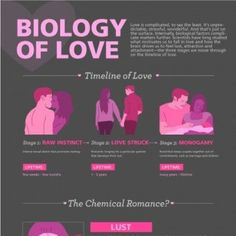 Published by: Medify TIPS FOR: love, romance, relationships, chemical romance, biology, testosterone, estrogen, hormone, hormones, lust, attraction, adrenaline, dopamine, serotonin, attachment, oxytocin, vasopressine