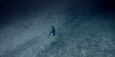 Freediver Guillaume Néry Rides An Ocean Current To An Alien Landscape