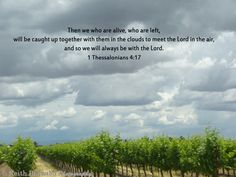 1 Thessalonians 4:17 1 Thessalonians 4, Daily Bread, Bible, Clouds, Biblia, The Bible, Cloud