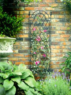 Tom Chambers Spiral Trellis - with Trough & Mounting Brackets added on