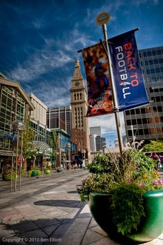 The 16th Street Mall. Denver, Colorado!! Living In Colorado, Colorado Homes, Colorado River, Colorado Springs, Denver Colorado, Denver Broncos, Colorado Trip, Broncos Fans, Places To Travel