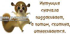 Прикольные фразочки в картинках №2814 » RadioNetPlus.ru развлекательный портал