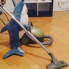 A Typical Day In The Life Of An IKEA Shark Images) - The internet has generated a huge amount of laughs from cats and FAILS. Shark Meme, Shark Bait, Baby Shark Do Do, Cute Shark, Freshwater Aquarium, Aquarium Fish, Fail Blog, Shark Puppet, Memes Estúpidos
