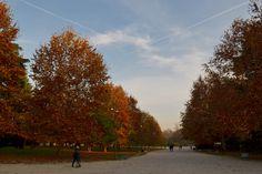Parco Sempione. Casa.