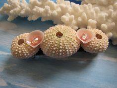 Seashell Hair Clip Shell Hair Barrette 3.5 by TheSleepySeahorse