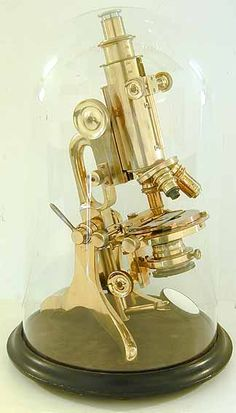 antique microscope Garage, ideas, man cave, workshop, organization, organize, home, house, indoor, storage, woodwork, design, tool, mechanic, auto, shelving, car.