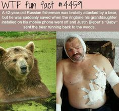 Good to know bears hate Justin Bieber just as much as humans do.