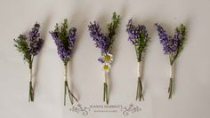 Lavender and thyme buttonholes.