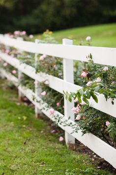 Gardens lining our white picket fence Bare Bones Photo Tour :: Historic Cedarwood Front Yard Fence, Farm Fence, Diy Fence, Fence Ideas, Driveway Landscaping, Backyard Fences, Acreage Landscaping, Driveway Gate, Landscaping Ideas