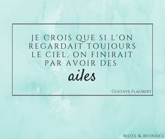 #quotes #flaubert #wings #ciel #sky #ailes #citation