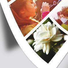 Impresión en papel fotográfico en Veracruz, Ideal para tus fotos familiares y momentos únicos. Imprime tus fotos o proyectos con una nitidez sorprendente en Princot Veracruz.