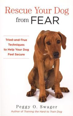 RESCUE YOUR DOG FROM FEAR: TRIED-AND-TRUE TECHNIQUES TO HELP YOUR DOG FEEL SECURE - Behavior - Dogwise.com
