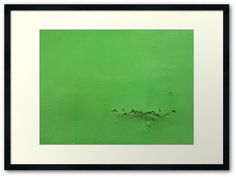 Say something green  by TalBright #photography