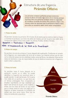 ♥ Piramide olfativa, la estructura del perfume ♥ Natura Cosmetics, Health, Flora, Spa, Homemade Perfume, Fragrance, Tips, Health Care, Plants