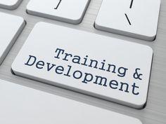 Online Course - Human Resources Exam Prep (PHR)