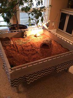 Image result for elevated planter for indoor tortoise