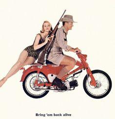 "Honda Cub ""Bring 'em back alive"" Classic Honda Motorcycles, Honda Bikes, Cool Motorcycles, Vintage Motorcycles, Vintage Motocross, Honda Cub, Soichiro Honda, Motorcycle Posters, Japanese Motorcycle"