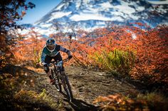 Yeti images from EWS round 1 in Chile 2014