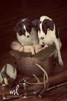 www.mlportraits.com - Infant Photography | Newborn Photo Session | Boy | Dogs | Baby | Duck | 2014 | Hunting | Guard Dogs | Love | Handsome