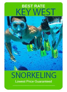 miamisightseeingtours - Google Search Key West Snorkeling, Best Rated, Tours, Miami, Movie Posters, Google Search, Film Poster, Film Posters
