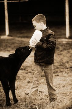 Bottle calves ~ see also http://www.motherearthnews.com/homesteading-and-livestock/raising-bottle-calves-zmaz78mazjma.aspx?PageId=3#ArticleContent