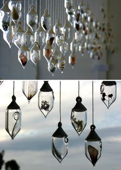 Sarah Dingwall   I am in love with the lovely glass works Sarah makes. Sarah, based in Mornington Peninsula, completed a Fine Arts degree majoring in Glass at Monash University. Her techniques are hand blowing and flame working which she combines...
