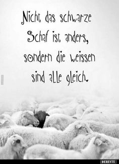 Not the black sheep is different . - Not the black sheep is different … - Self Love Quotes, Happy Quotes, Hope Quotes Never Give Up, Christmas Wreaths To Make, Christmas Eve, Quotes And Notes, Life Is Like, True Words, Quotations
