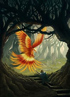 Phoenix - Conceptual Illustrations by Christian Gerth (inspirefirst)